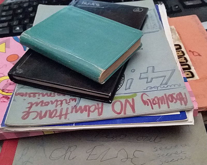 I'm still trying to decide which of my own diaries to read from... They're all as mortifying as each other